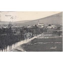 Bazovica